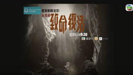 TVB台庆剧《致命复活》11月20日首播